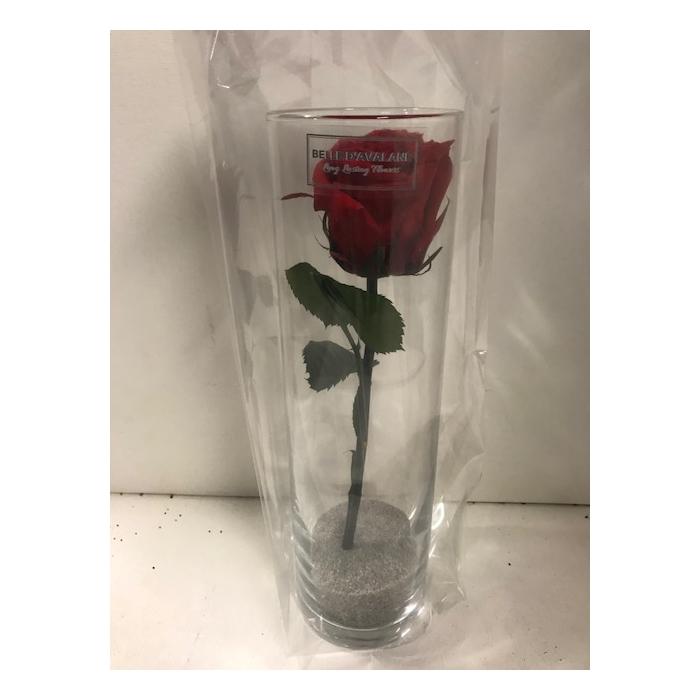 <h4>Glas met roos roos d6.5x23cmh</h4>