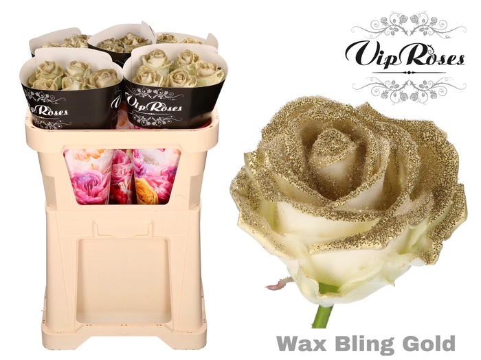 <h4>R GR WAX BLING GOLD</h4>
