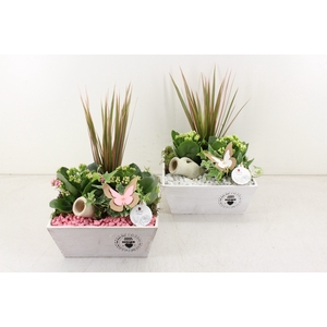 arr. PL - Hout 4kant home - roze/wit