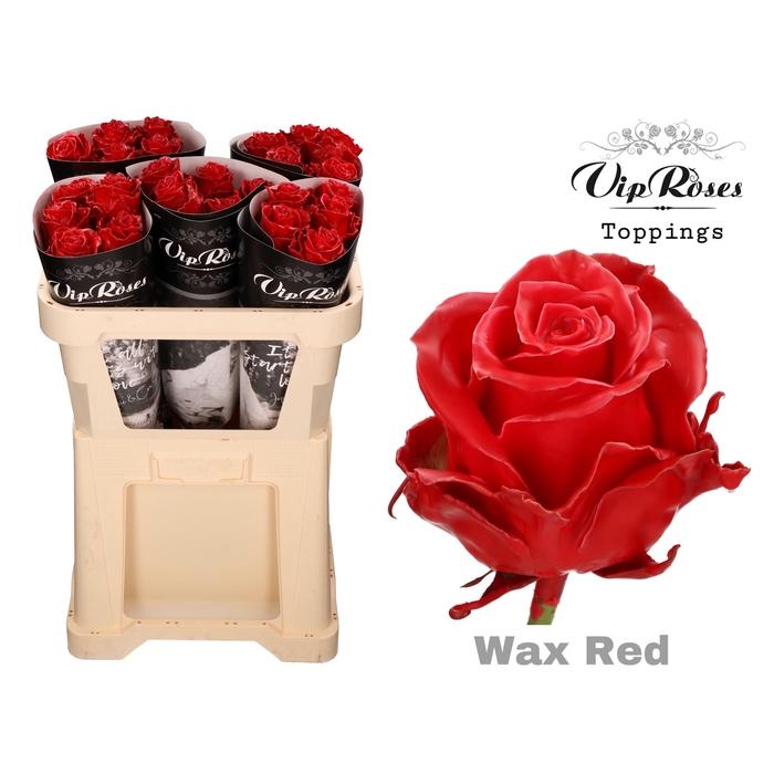 <h4>R GR WAX RED x 25</h4>