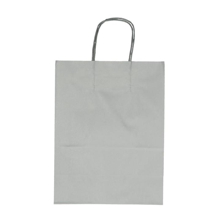 <h4>Bags Paper d23/12*30cm</h4>