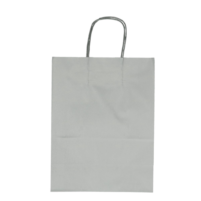 <h4>Tassen Papier d23/12*30cm</h4>