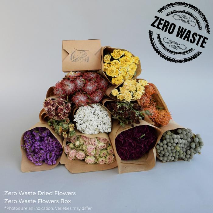 <h4>ZERO WASTE FLOWERS BOX</h4>