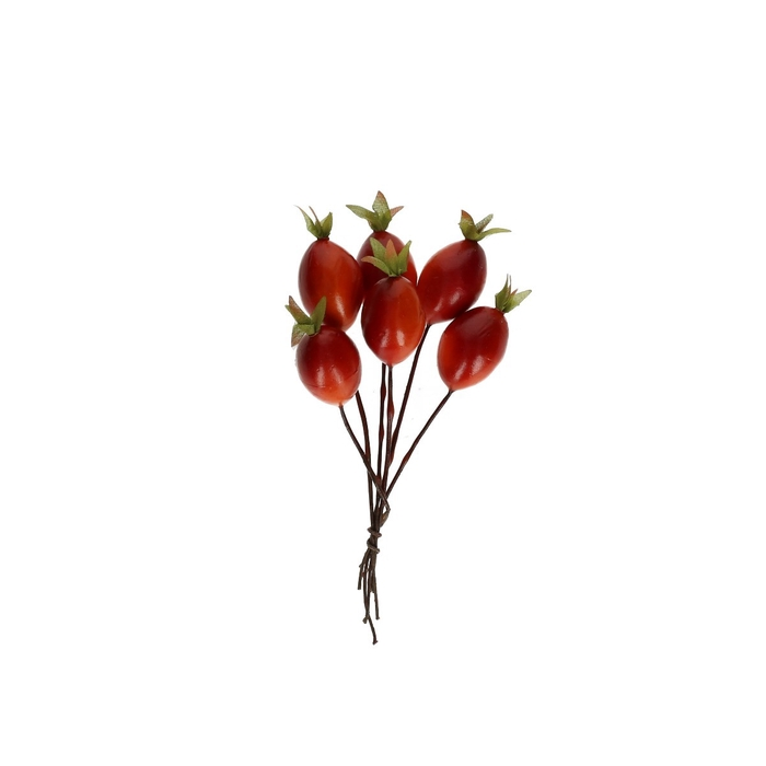 <h4>Autumn Rose hip/wire d3cm x36</h4>