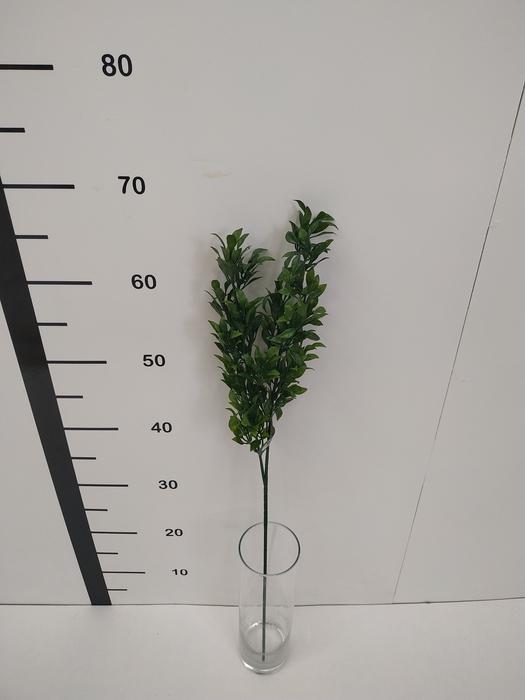 <h4>Haste folha plastico verde</h4>