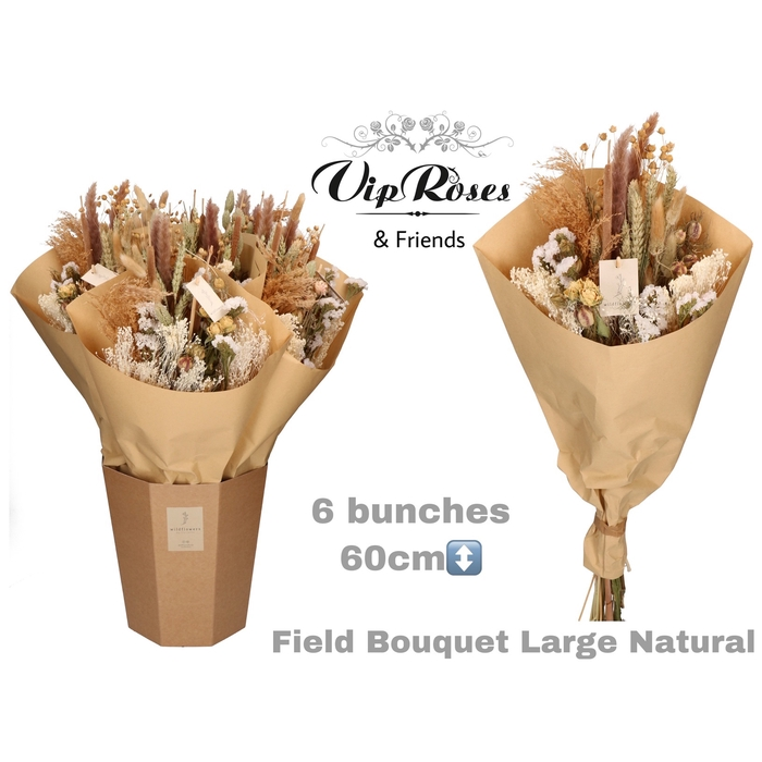 <h4>DRIED BOUQUET LARGE NATUREL</h4>