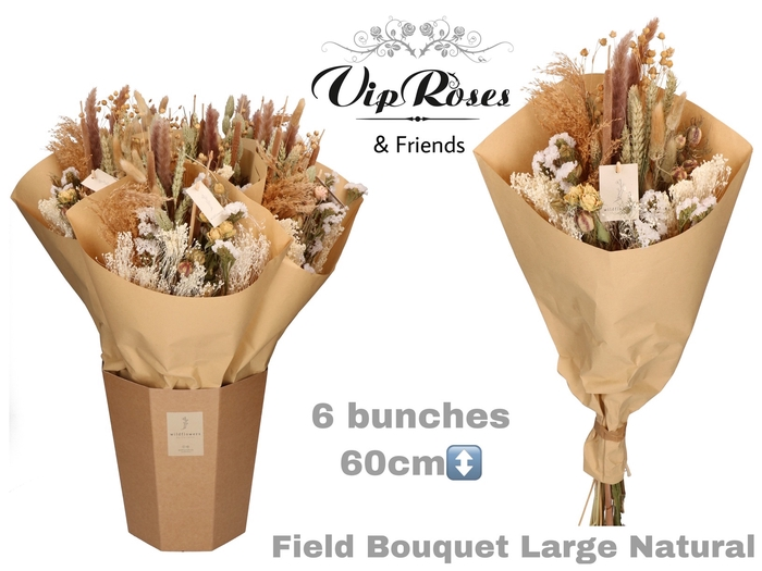 <h4>Vip Dried Bouquet Large Naturel</h4>