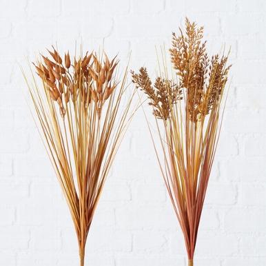 <h4>Zijde, Grassoorten, H 48 cm, 2 ass, Light brown</h4>