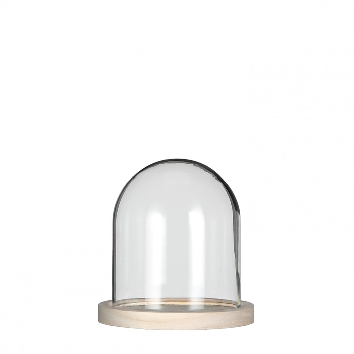 <h4>Glass Cloche+wood d12*13cm</h4>