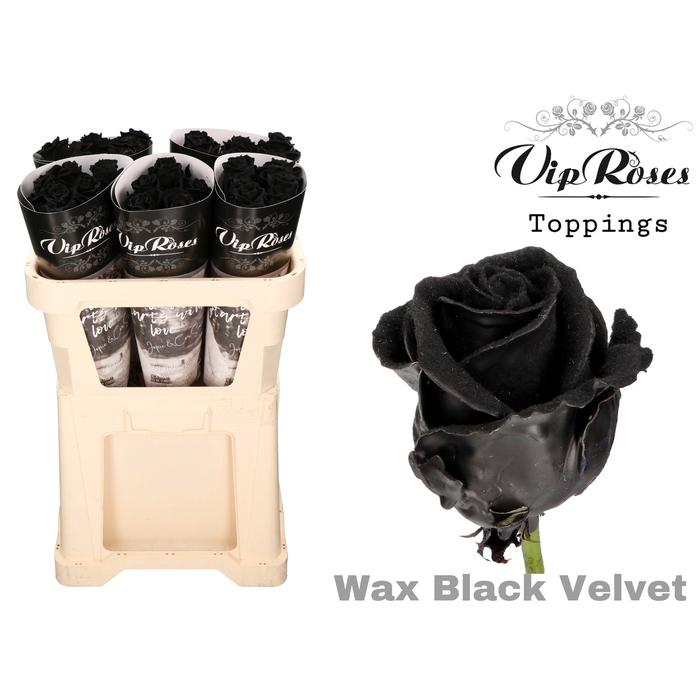 <h4>R GR WAX VELVET BLACK</h4>