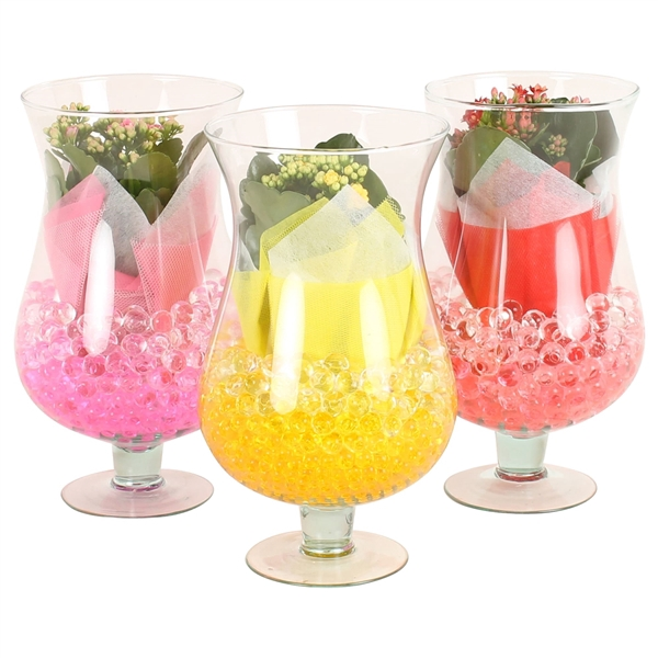 <h4>Cognac glass Large 17cm with arr Kalanchoe and gelpearls</h4>