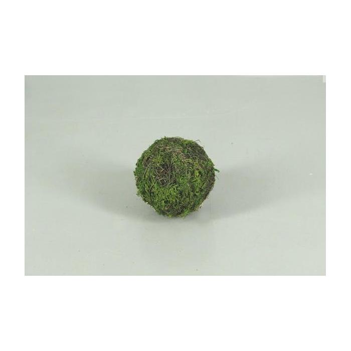 <h4>Ball Salim+moss  8cm</h4>
