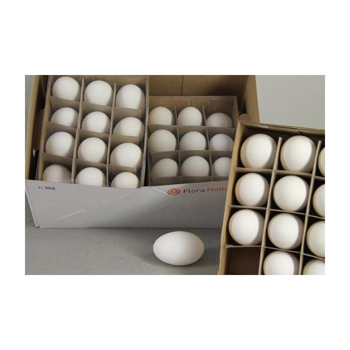 <h4>Egg Goose Natural Box(12pcs)</h4>