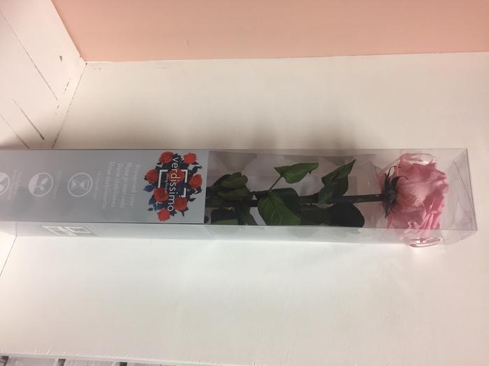 <h4>Roos op steel xl Plexi 55cm Pastel pink</h4>