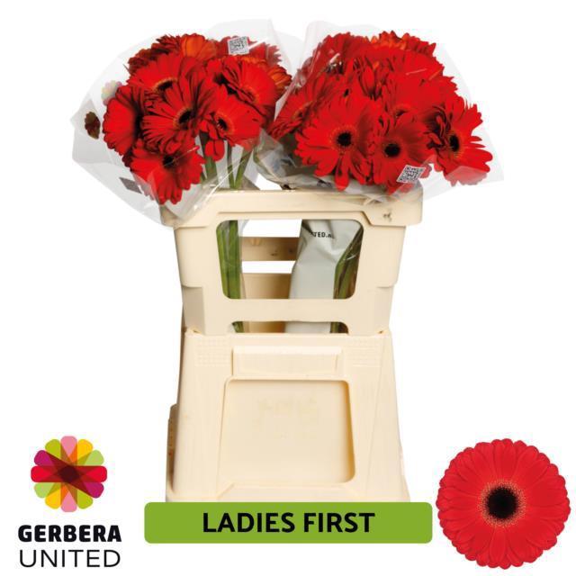 <h4>GE GR Ladies First water</h4>