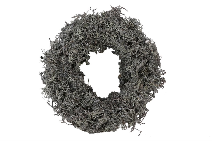 <h4>Krans Bonsai Larixmos Thick Frosted D30.0</h4>