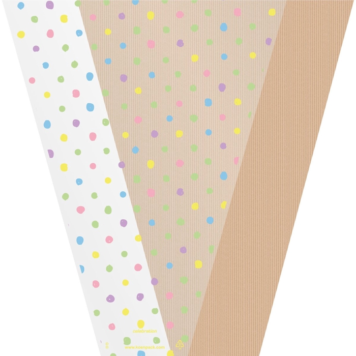 <h4>Sleeves Celebration 50*35*10cm x50</h4>