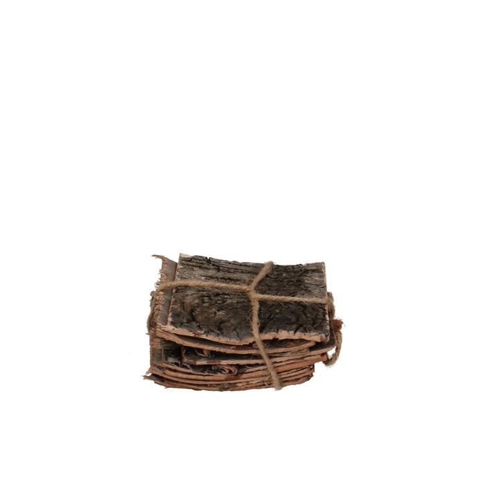 <h4>Dried articles Cortex Birch 10*10cm x10</h4>
