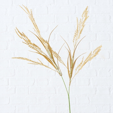 <h4>Zijde, Grassoorten, H 75 cm, 1 ass, Naturel</h4>