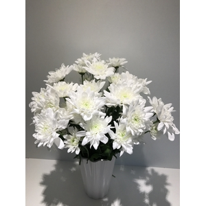 Chr Spray White Pina Colada