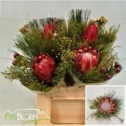 <h4>Bouquet safari protea</h4>