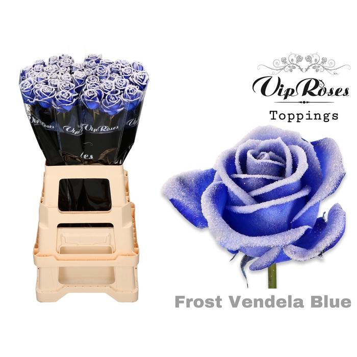 <h4>R GR FROST VENDELA BLUE</h4>