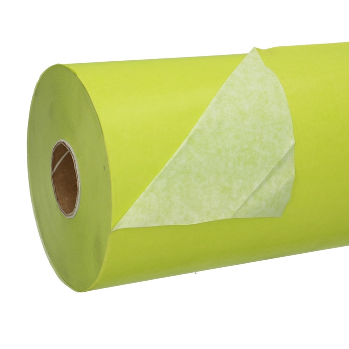<h4>Papier Rol 50cm 40g 7.5kg Wit/Groen</h4>