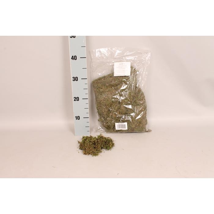 <h4>MOS gedroogde Mos  250 gram</h4>