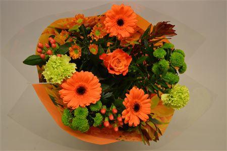 <h4>15 Stelen Oranje</h4>