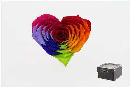 <h4>Pr 5.2 Heart Rainbow Xxl</h4>