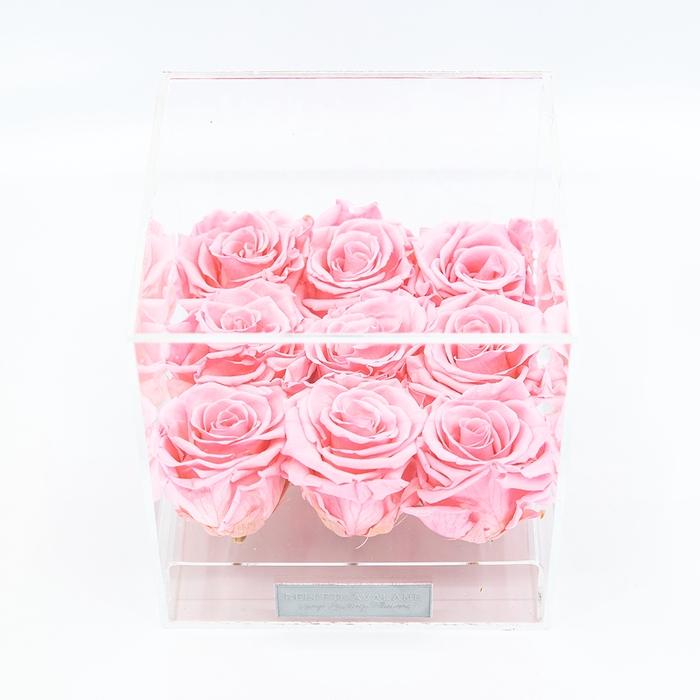 Plexi 15cm roze rozen