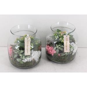 arr. MB - Candy jar M - roze/wit