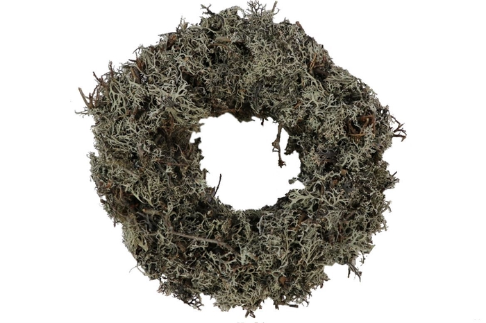 <h4>Krans Bonsai Larixmos Naturel D25.0</h4>