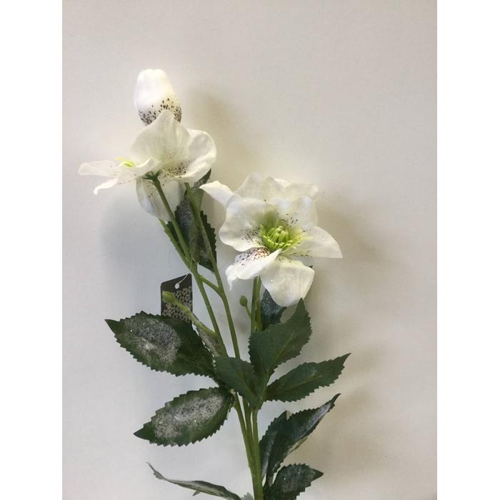 <h4>SILK FLOWERS - HELLEBORUS SPRAY NICOLAH WHITE 60CM</h4>