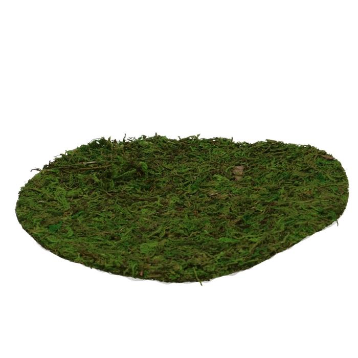 <h4>Dried articles Moss sheet rnd d20cm x2</h4>