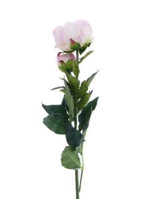 <h4>Af Peony 78cm Pink</h4>