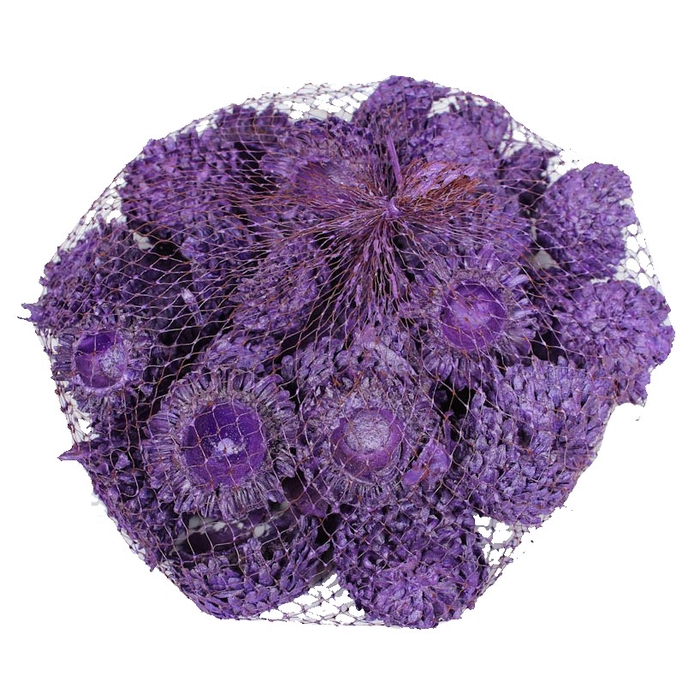 <h4>Acorn Cones 500gram in net purple pearl</h4>