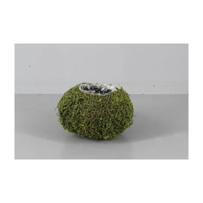 <h4>Planter Moss(dried) Ø18x10 Grn</h4>