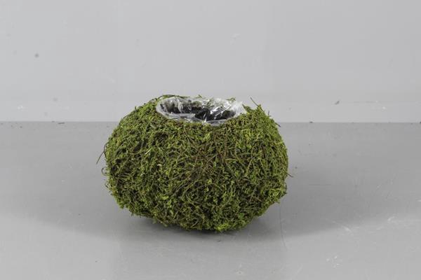 <h4>Planter Moss Basket Ø18x10cm</h4>