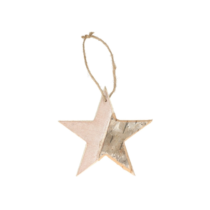 <h4>Kerst natural Hanger ster d12*11cm</h4>