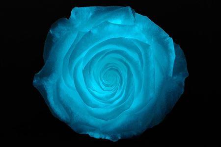 <h4>Pr 1.6 Glow In Dark Bl Xl</h4>