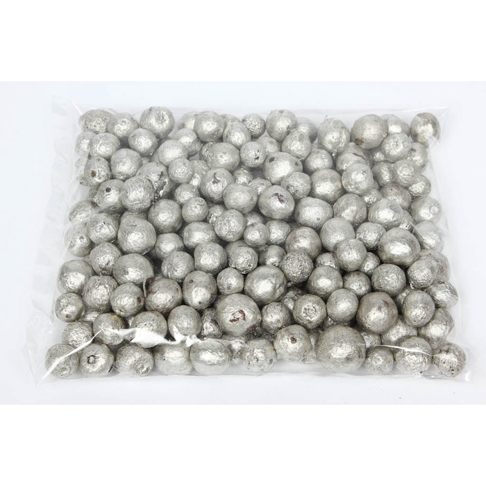 <h4>Apple pods 500gr in poly platinum</h4>