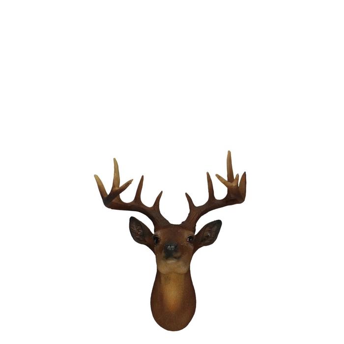 <h4>Autumn Deerhead 19cm</h4>