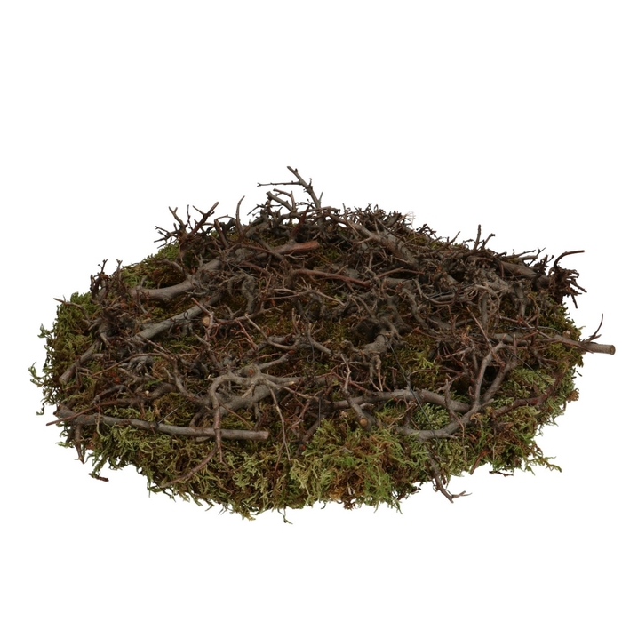 <h4>Dried articles Basic bonsai+moss d40cm</h4>