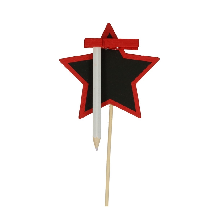 <h4>Christmas sticks 50cm Blackboard Star 8cm</h4>