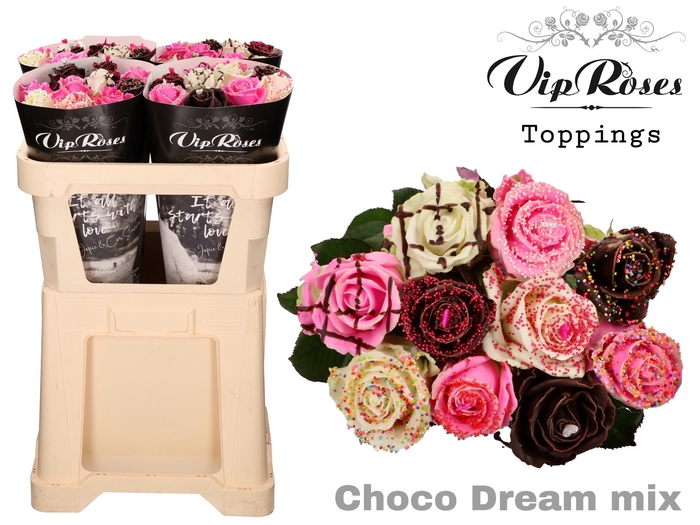 <h4>Vip R Gr Choco Dream Mix</h4>