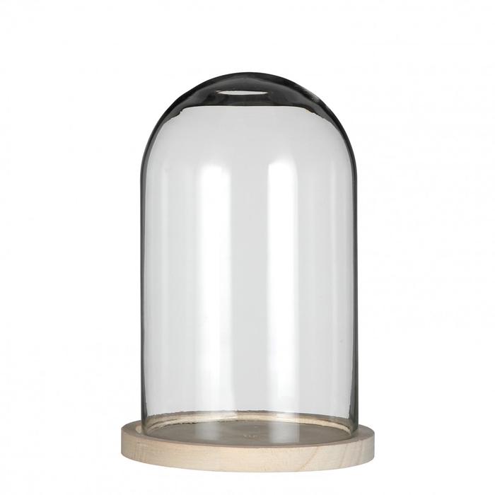 <h4>Glas Stolp+hout d14*21cm</h4>