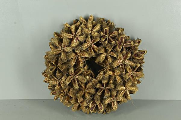 <h4>Wreath Kartoos Ø38cm Natural</h4>