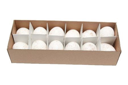 <h4>Basic Egg Chicken Spickeled 12pc</h4>