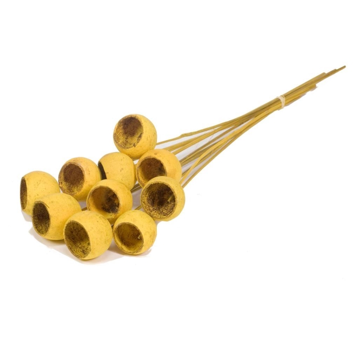 <h4>Bell cup o/s 10pc yellow</h4>